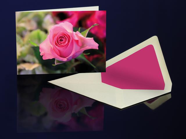 Grusskarte Rose Pink aus der Katharine Siegling Collection