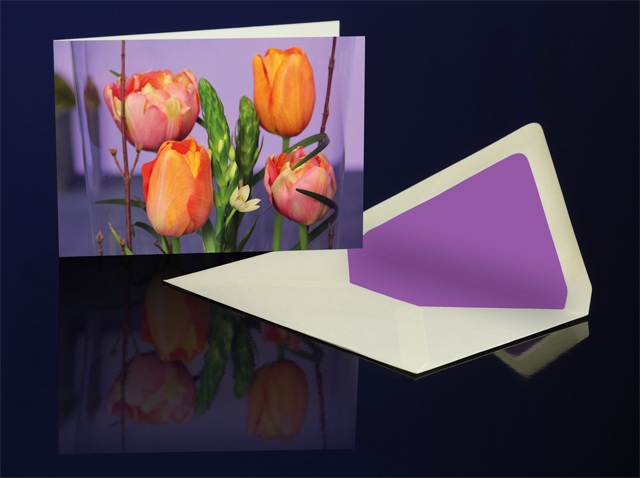 Grusskarte Tulpen 4 U aus der Katharine Siegling Collection